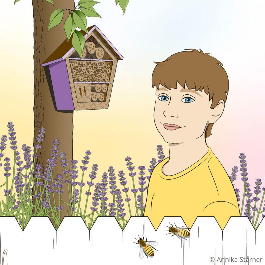 Illustration av ung kille bland lavendel, bakom ett vitt staket med två bin på. I bakgrunden ett bihotell på ett träd.ket